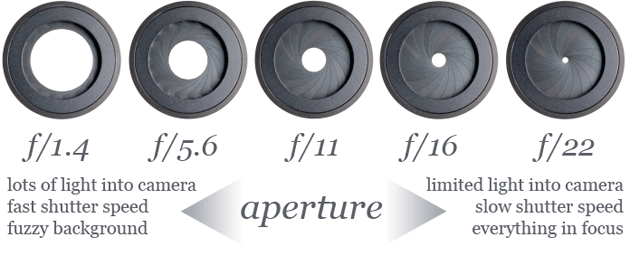 photography basics with rainsford photography the front porch : aperture diagram - findchart.co