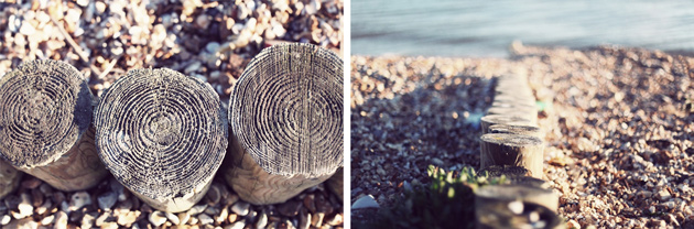 groyne posts - calshot beach