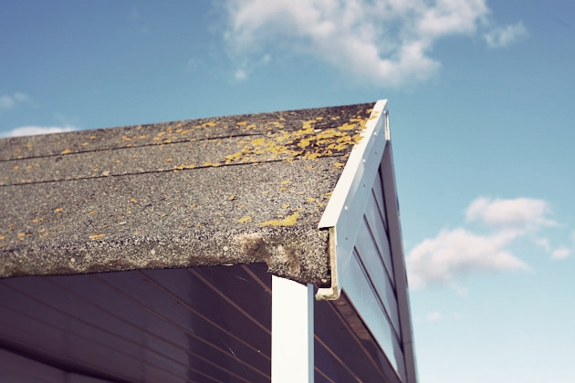 beach hut roof - calshot