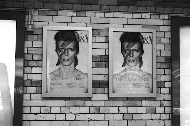 tunnel bowies