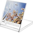 A freebie 2014 calendar template for your photos