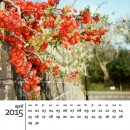 A free 2015 calendar template for Photoshop